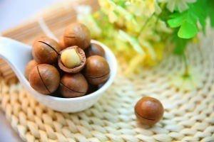 macadamia-nuts-1098170_640